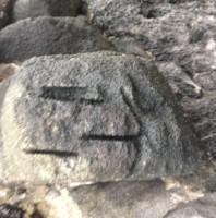Rock Cat Smiley