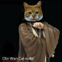 Obi-Wan Cat-nobi