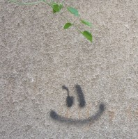 Welcome Smiley at my Doorstep