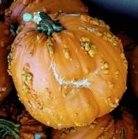 Pumpkin Smiley