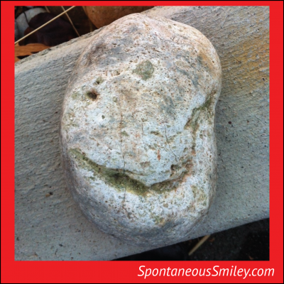 Rock Smiley