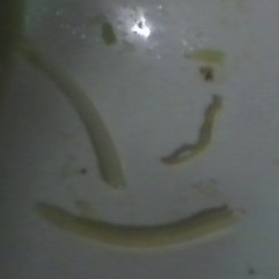 Soup Smiley