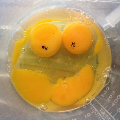 Egg #Smiley #SmileyFace