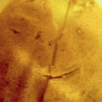Baked Potato Smiley