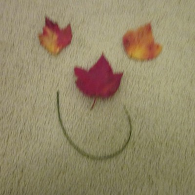Fall Leaves Smiley