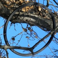 Tire in a Tree Smiley