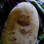Potato Smiley, 2
